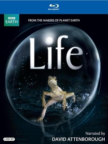 BBC Życie / Life (2010) 1080i Lektor / Napisy PL