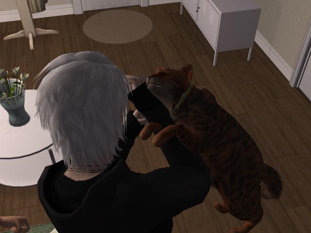 photo Sims2EP8201304082306.jpg