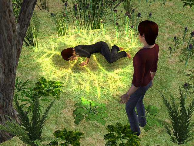 photo Sims2EP8201307141728.jpg