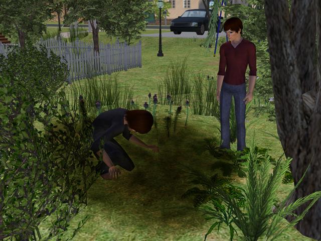photo Sims2EP8201307141735.jpg