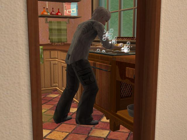 photo Sims2EP8201312142133.jpg
