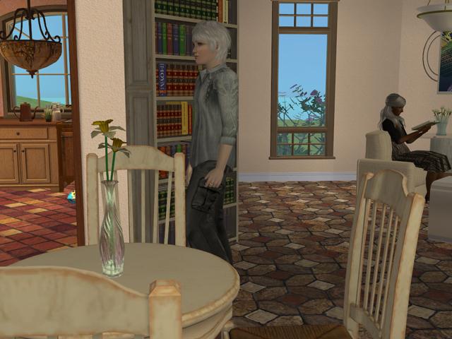 photo Sims2EP8201312142141.jpg