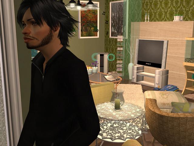 photo Sims2EP8201402230003.jpg
