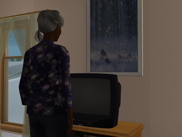photo Sims2EP8201404121441.jpg