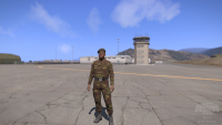 arma3201307261512348.png