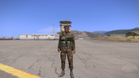 arma3201307261707098.png