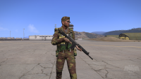arma3201307271421545.png